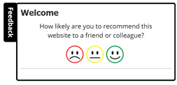 Add visitor feedback surveys to your website